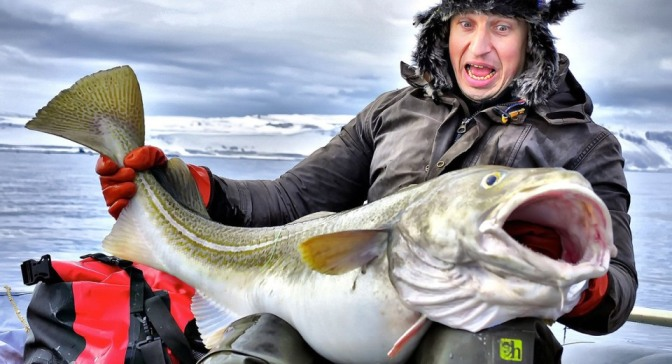 когда и где в норвегии ловить треску